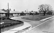Wolsingham, The Bungalows c.1955