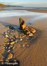Whitby, Sand & Stone c2010