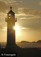 Whitby, Sunrise at the Lighthouse c2010