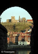 Whitby, Tunnel Vision c2010