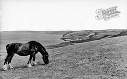 Aberaeron, View Towards Aberarth c.1955