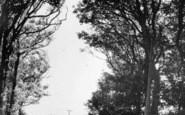 Aberdaron, Anelog Mountain c.1960