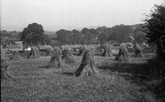 Abererch, A Harvest Field 1936