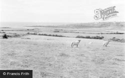 Aberffraw, Porth Cwyfan 1959