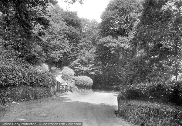 Photo of Aberystwyth, Cwm Woods 1921