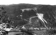 Aberystwyth, Rheidol Valley, The Stag 1903