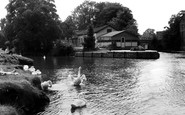 Abingdon-on-Thames photo