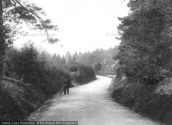 Photo of Abinger Common, 1906