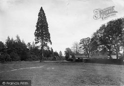 Abinger Common, 1921