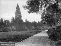 Abinger Common, 1924