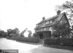 Abinger Common, 1924