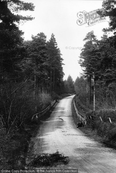 Photo of Abinger Common, Pasture Wood Road 1906