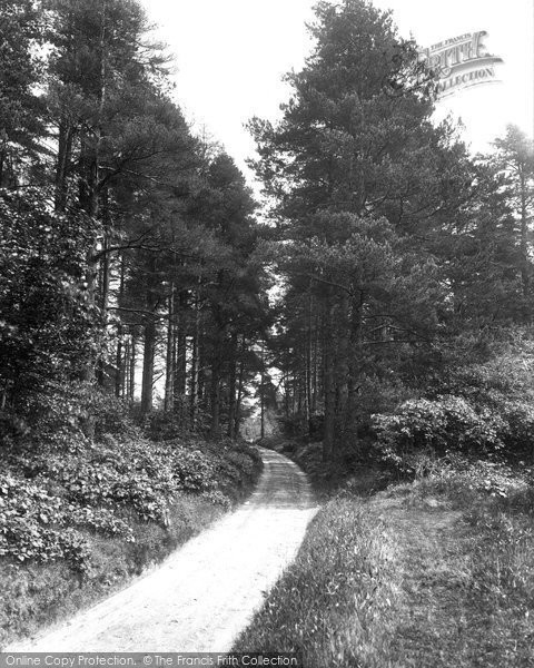 Photo of Abinger Common, Path To Friday Street 1924