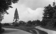 Abinger Common, St James' Well 1924