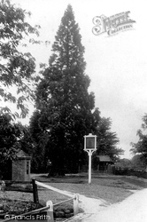 Abinger Common, The Stocks 1907