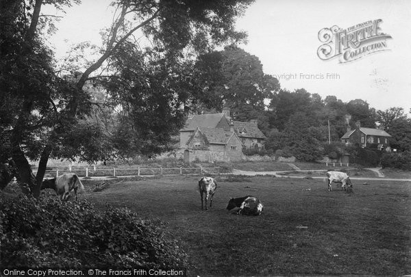 Photo of Abinger Hammer, Hatch Farm 1915