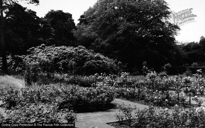 Photo of Addiscombe, Rose Garden, Coombe Woods c.1965