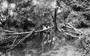 Addlestone, Near Crockford Bridge 1904