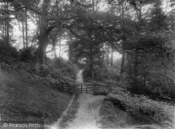 Albury, Entrance To Silver Wood 1924