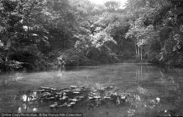 Photo of Albury, Silent Pool 1890