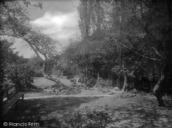 Albury, The Drummond Arms Garden 1924