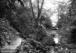 Albury, The Silent Pool 1911