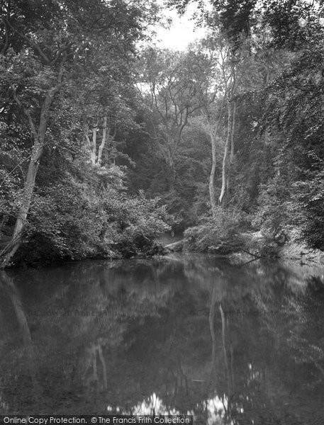 Photo of Albury, The Silent Pool 1928