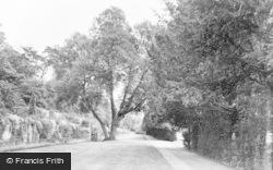 Albury, The Terrace c.1955
