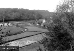 Albury, Watercress Beds 1909