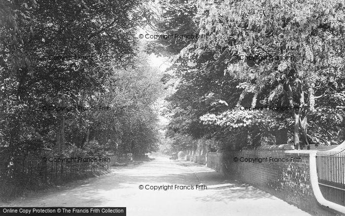 Photo of Aldborough, Manor Road 1895
