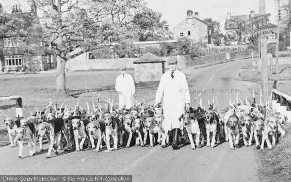Photo of Aldbrough St John, Fox Hounds And Trainers c.1950