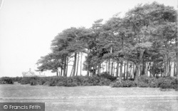Aldeburgh, On The Golf Links 1901