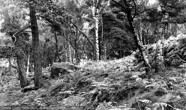 Photo of Alderley Edge, Druids Stones c.1955