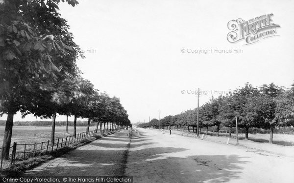 Aldershot, Queen's Avenue From Canal Bridge 1898