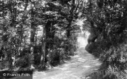 Alfriston, Road View 1894