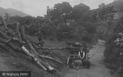 Collecting Wood 1910, All Stretton