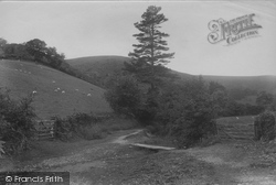 Entrance To Batch Valley 1910, All Stretton