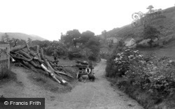 All Stretton, The Long Mynd Hills, Collecting Wood 1910