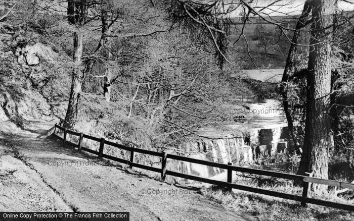 Photo of Allendale, Holmes Linn c.1955