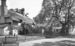 Allerford, Budleigh Hill c.1950