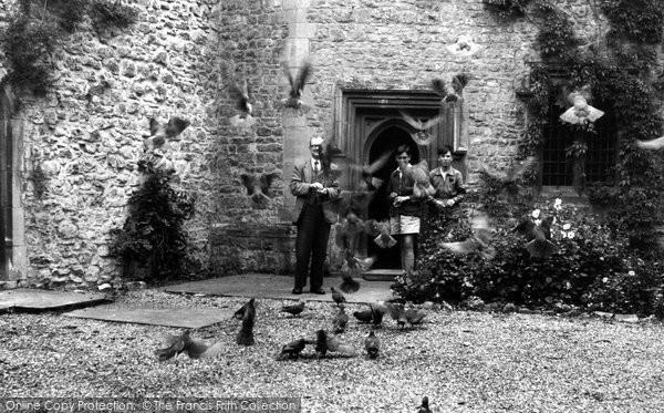 Photo of Allington, Castle, Pigeons c.1955