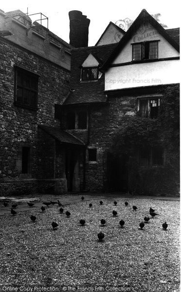 Photo of Allington, Castle, Pigeons c.1955
