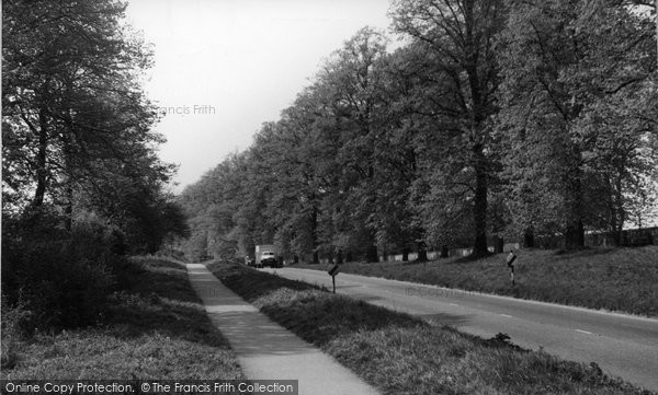 Photo of Alresford, The Avenue c.1955