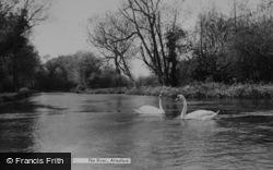 Alresford, The River c.1955