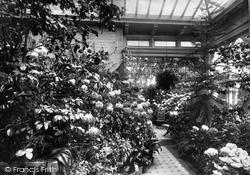 Ashdell, The Conservatory 1897, Alton