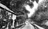 Alton, Rustic Bridge At Ashdell 1897