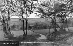 From Rectory Woods c.1965, Amersham