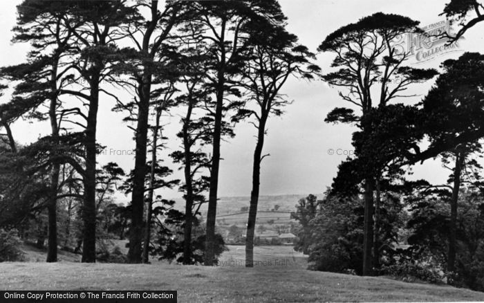 Photo of Ampthill, The Park c.1955