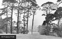 The Park c.1955, Ampthill