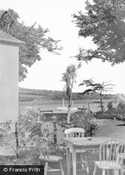 Angle, Tea Garden c.1955